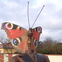 Homme Papillon